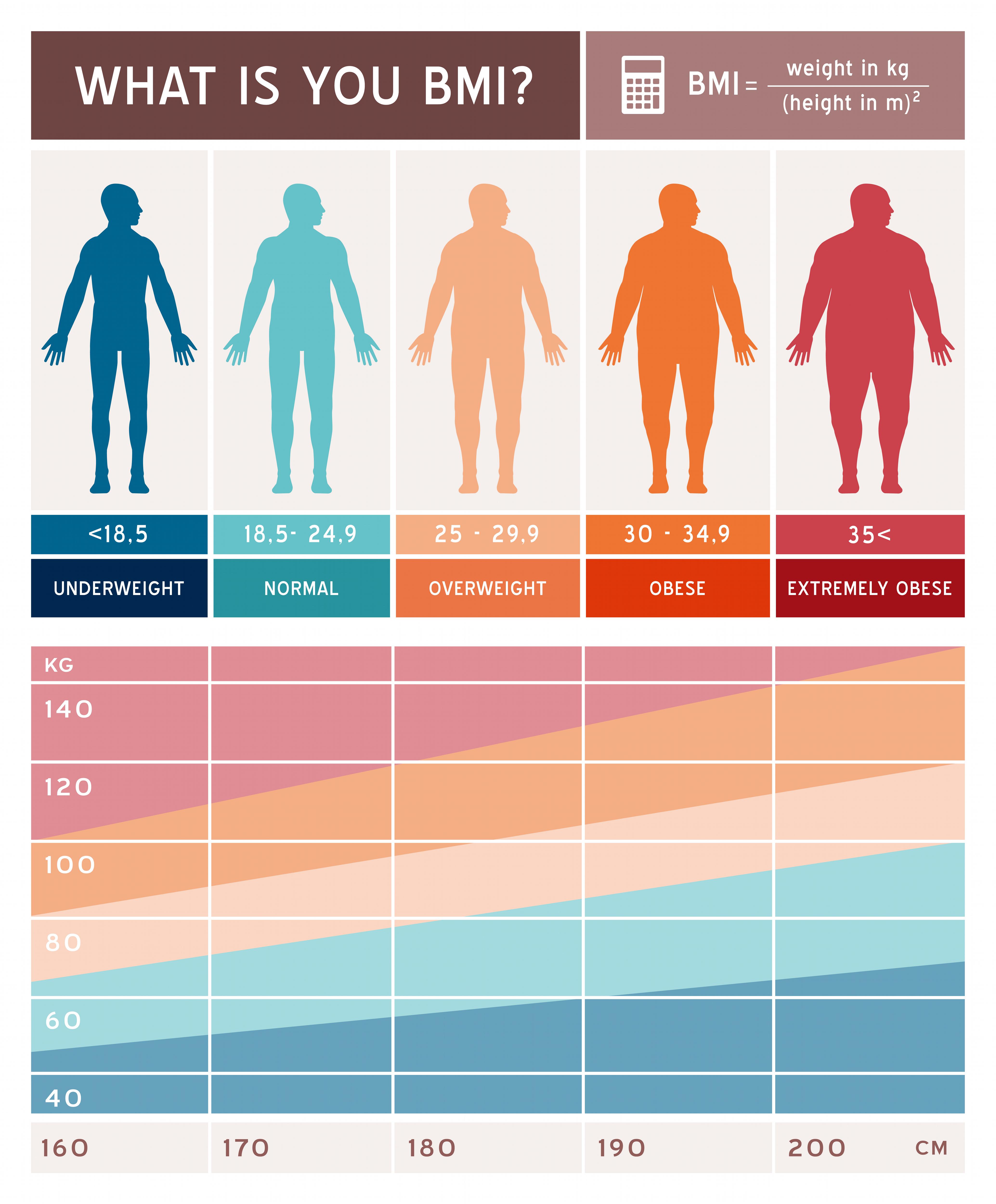 Body-Mass-Index BMI Grafik - Vitaes - Das Gesundheit Magazin
