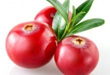 Cranberry Heilpflanze Heilkraft Anwendung