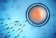 Gesünderes Sperma Ernährung Hilfe