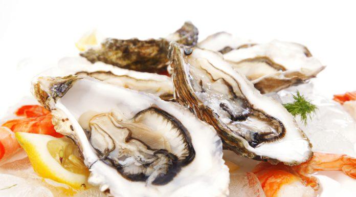 Schalentiere Heilkraft Seafood Muscheln Garnelen Anwendung