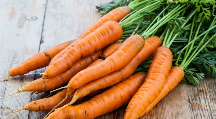 Karotten Heilkraft Anwendung Dosierung Nährstoffe