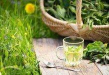 Brennesseln Tee Nieren Reinigung Verdauung Brennseeseltee
