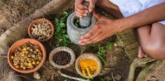 Heilpflanzen magen Darm Verstopfung Durchfall