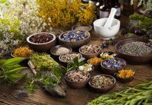14 Heilpflanzen für die Behandlung von Frauenleiden Wechseljahre Hormone