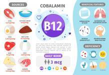 Infografik Vitamin B12. Vitamin enthaltende Produkte. Tägliche Norm. Symptome eines Mangels